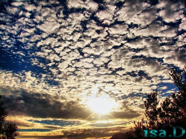 cotton .. clouds... by iytj