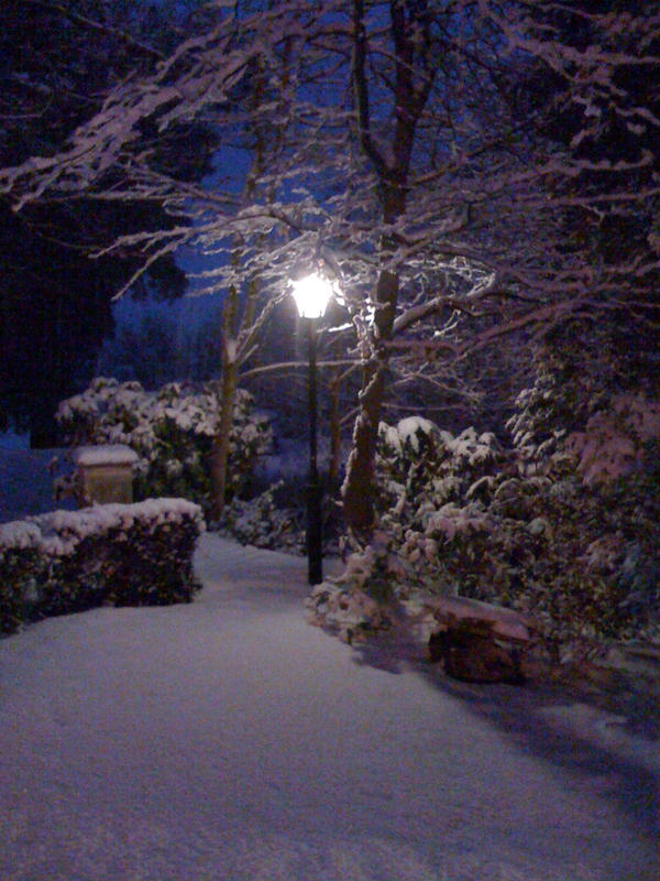 Narnia - The Lamp post by Scedwards on DeviantArt