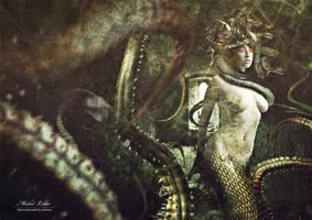 Medusa by Hocspy