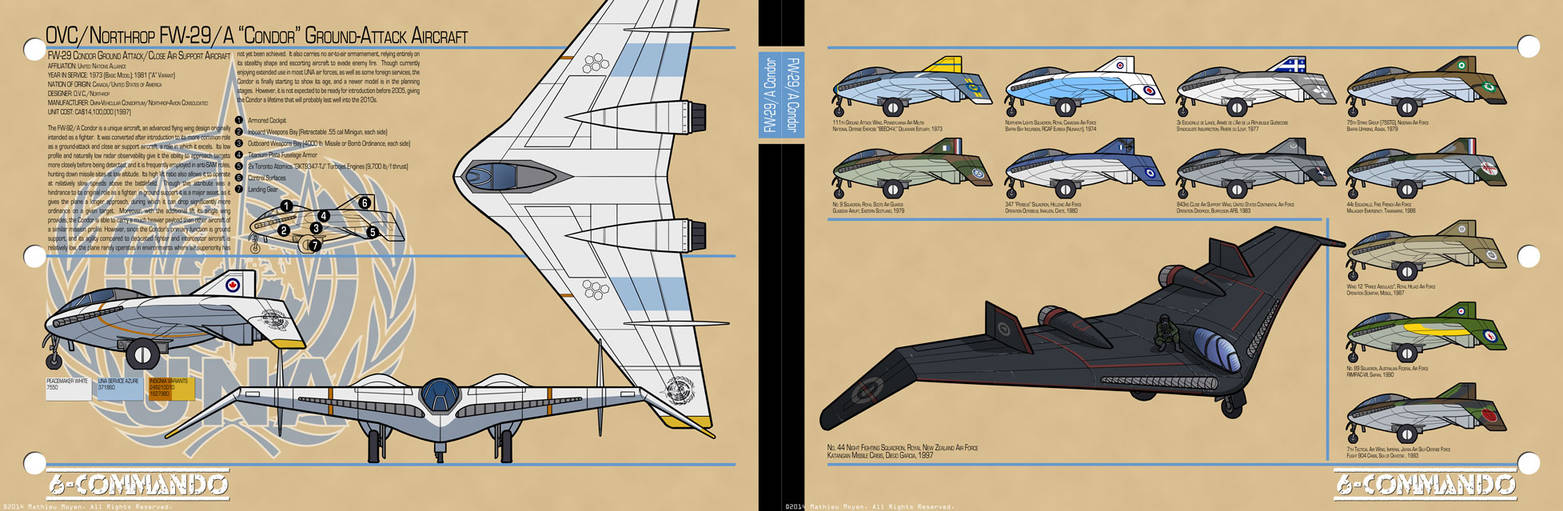 FW-29 'Condor' Fighter-Bomber
