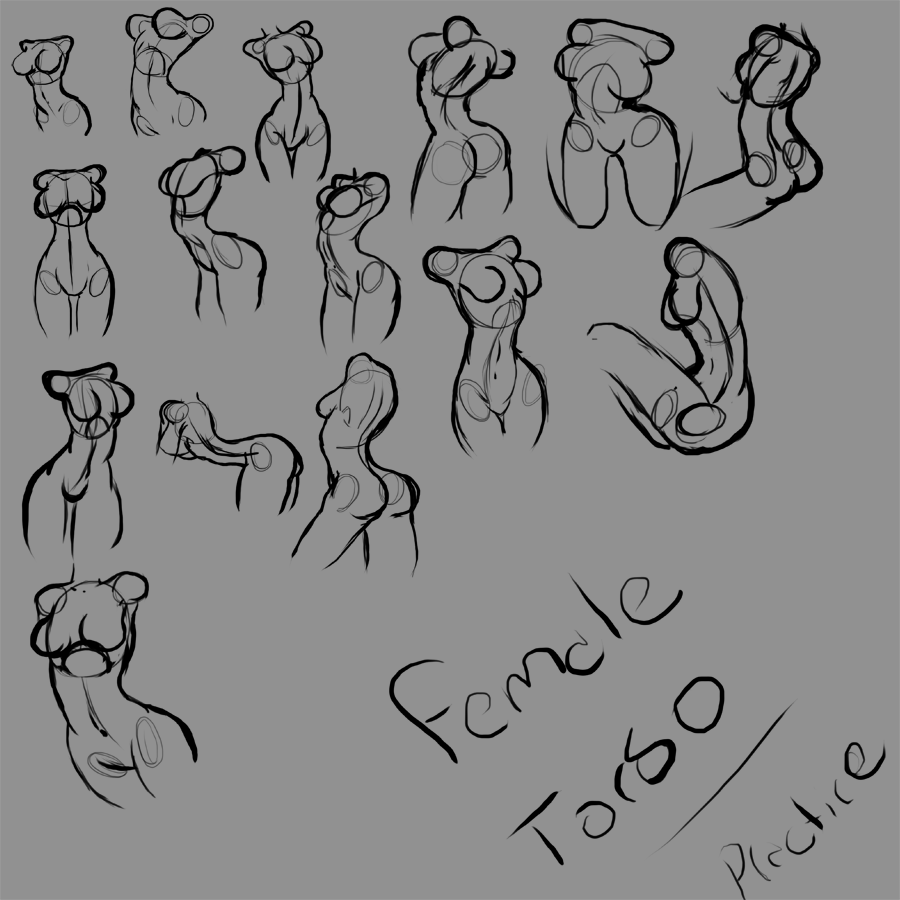Female Torso Practice by Jau-chan