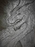 Sketchdragon by TheWolverineCello