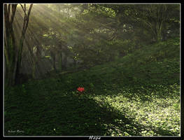 Hope by ArthurBlue