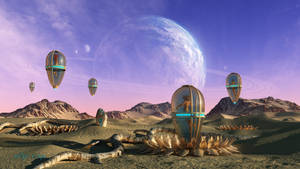 The Cocoons of the Seventh Moon