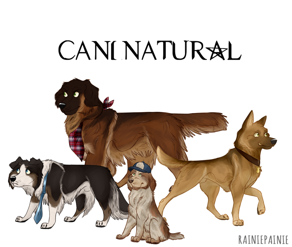 Caninatural by BreyerKat