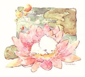water lily by Melonkitten