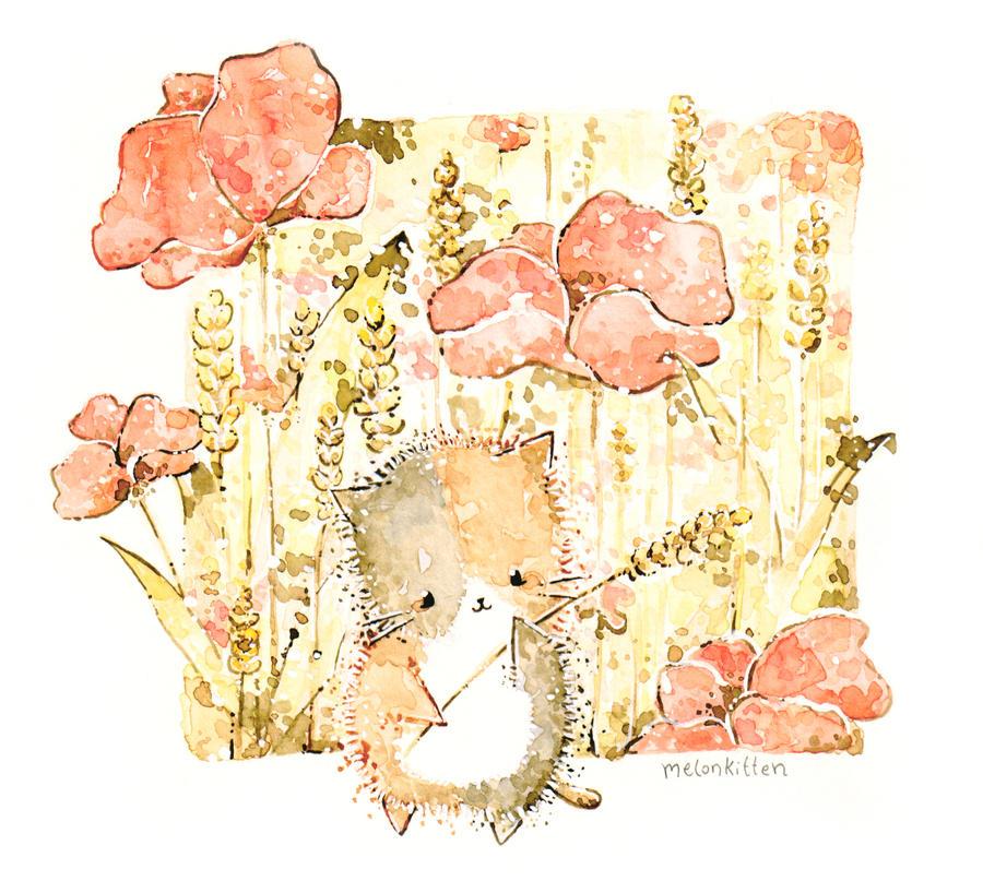 Poppy by Melonkitten