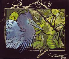 Little Blue Heron by melukilan