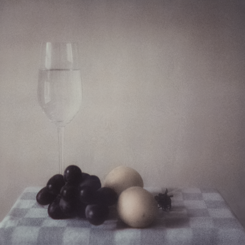 Still Life Study by intao