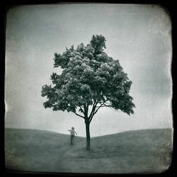 A World Of Ones Own II by intao
