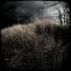 Melancholic by intao