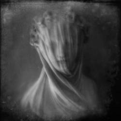 Silent Spring by intao