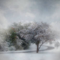 Winter Comes Early III by intao