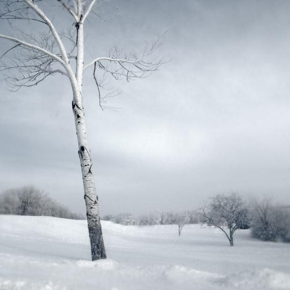 Winter Light by intao