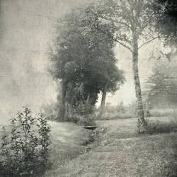 Garden Of Eden by intao