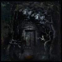 Forest Door by intao