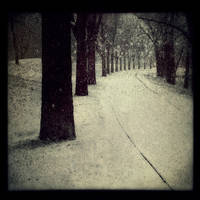 Into Winters Fold by intao