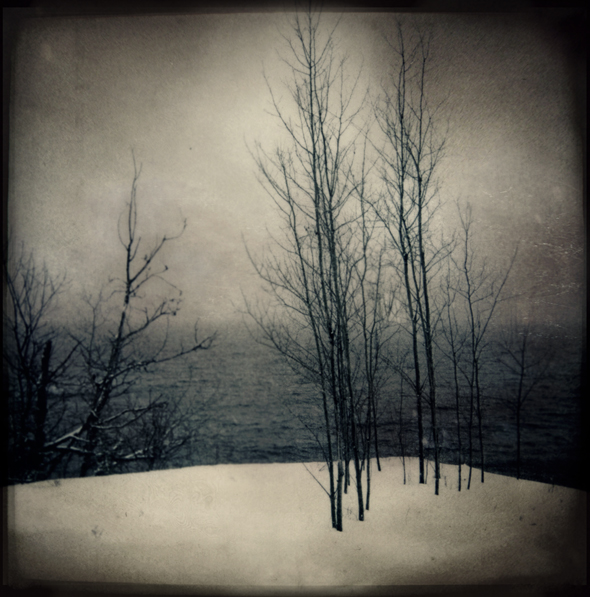 A Winter's Discontent