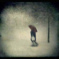 A Winter Dream by intao