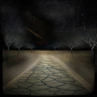 Night Road by intao