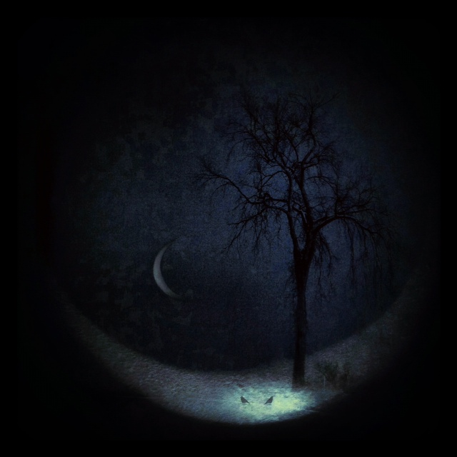Moon Walk by intao