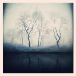 A Silver Blue Fog
