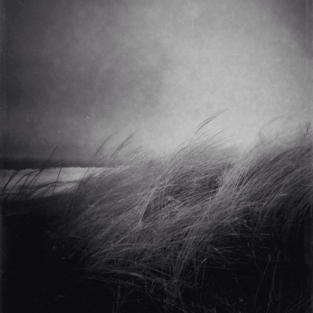Wind Leanings by intao