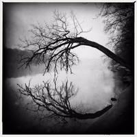 Circular Stillness by intao