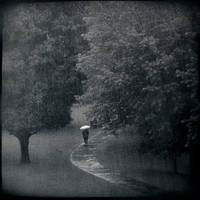 Rain by intao