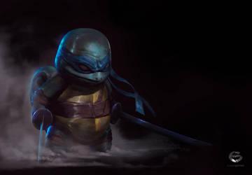 Squirtle Ninja / Leonardo