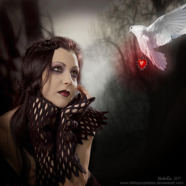 Bleeding Heart by LittlePurpleBee