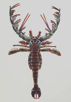Megalograptus by PrehistoryByLiam