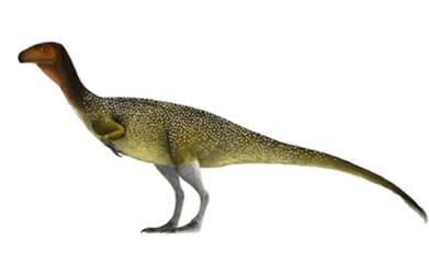 Chilesaurus by PrehistoryByLiam