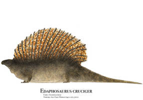 Edaphosaurus by PrehistoryByLiam