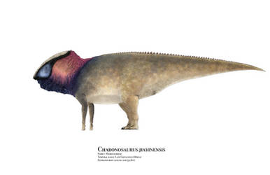 Charonosaurus by PrehistoryByLiam