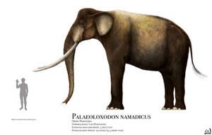 Palaeoloxodon namadicus by PrehistoryByLiam