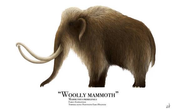 Woolly Mammoth by PrehistoryByLiam