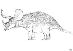 Triceratops sketch by PrehistoryByLiam