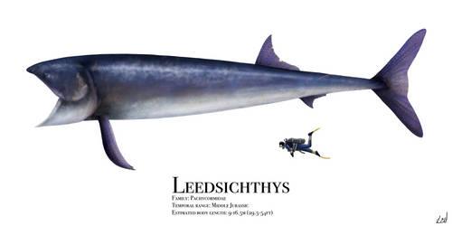 Leedsichthys by PrehistoryByLiam