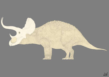 Triceratops Line Drawing by PrehistoryByLiam
