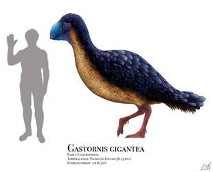 Gastornis by PrehistoryByLiam
