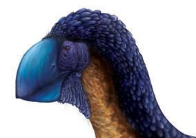 Gastornis Head Detail by PrehistoryByLiam