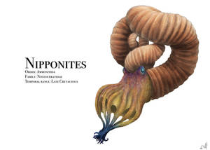 Nipponites