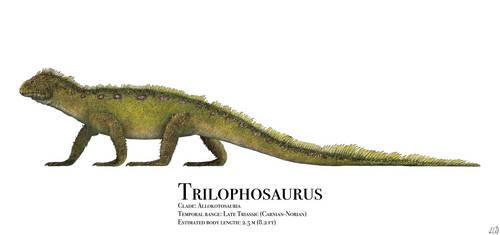 Trilophosaurus by PrehistoryByLiam