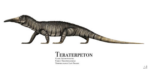 Teraterpeton by PrehistoryByLiam