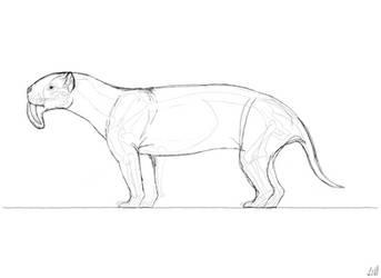 Thylacosmilus Sketch by PrehistoryByLiam
