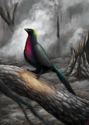 Tiaojishan Phoenix (Caihong juji)