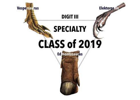 Digit III Specialty Class of 2019