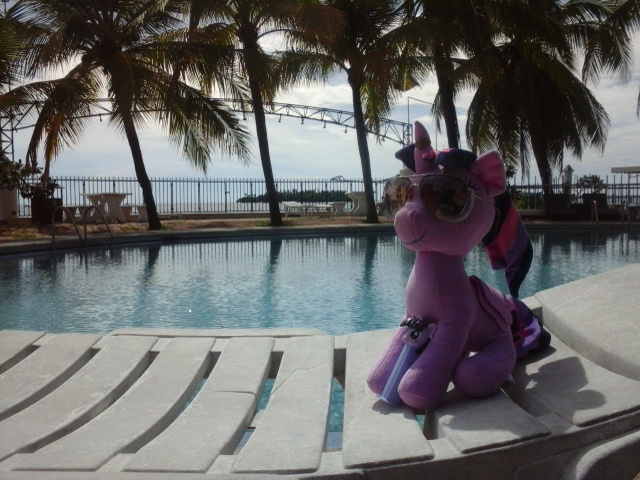 Ponies Around the World 2017-07-12 EQD Submission