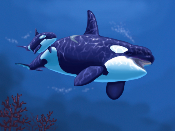 Orca and baby by guardian752 on deviantart orca and baby by guardian752 altavistaventures Images